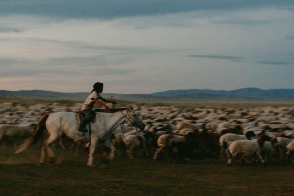 enfant bergé mongolie