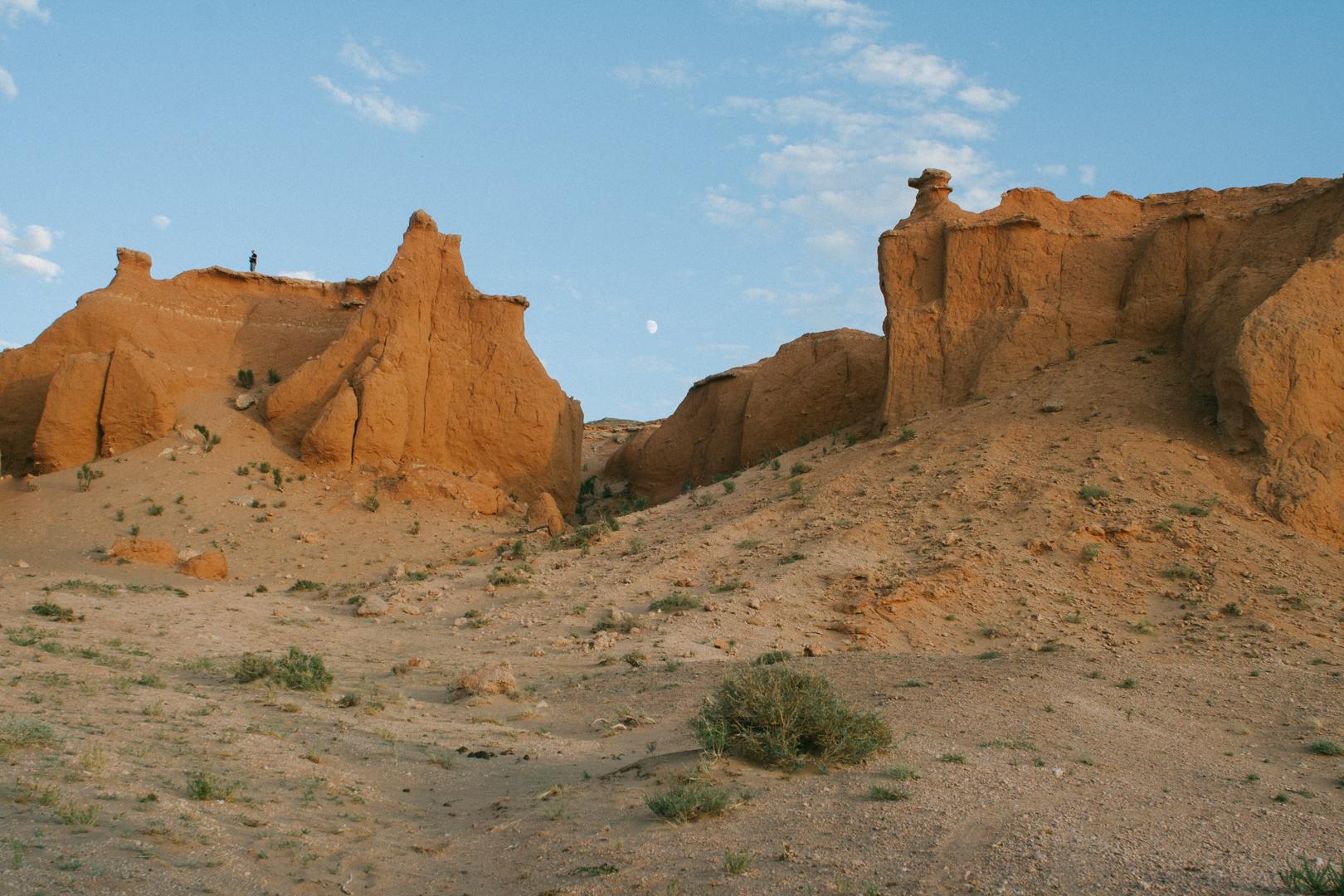 desert mogolie 3