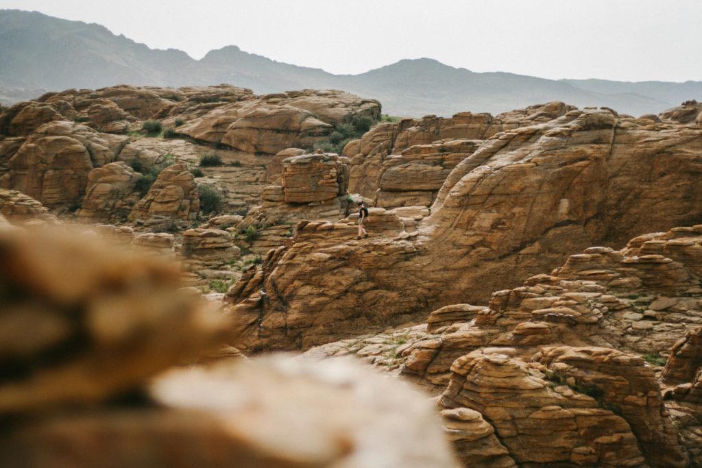 Desert mongolie